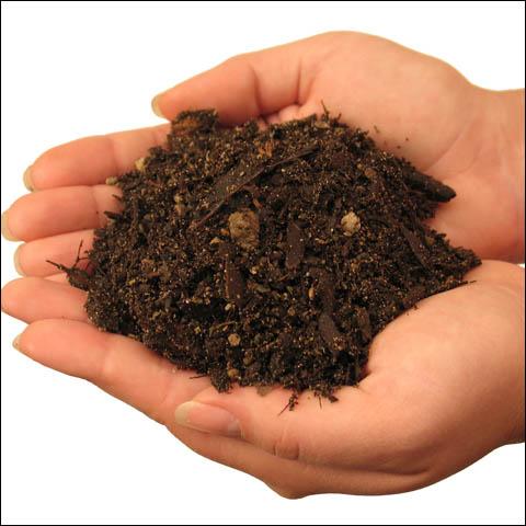 Продажа и прямая доставка растительного и плодородного грунта